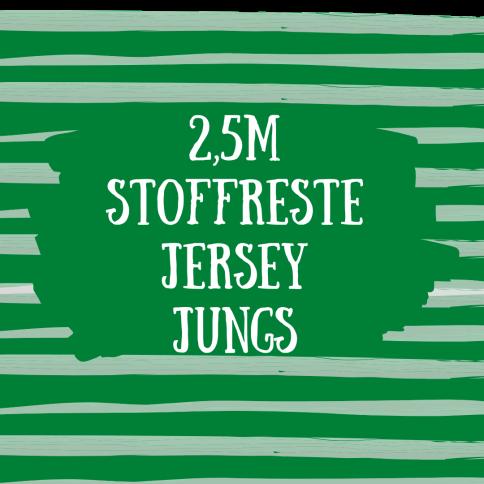 2,5m Stoffreste Jersey Jungs